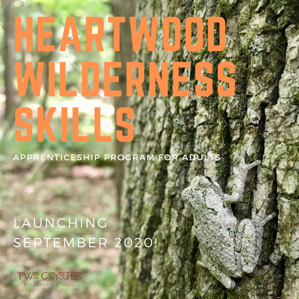 Heartwood Wilderness Skills: Apprenticeship program for adults. Launching September 2020!